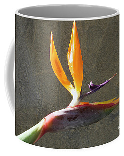 Coffee Mug featuring the photograph Exotic Flower by Elvira Ladocki
