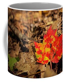 Fall In New Hampshire Coffee Mug