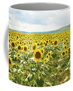 Field With Sunflowers Coffee Mug by Irina Afonskaya