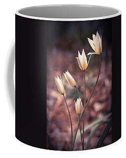 First Spring Flowers Coffee Mug by Lilia D