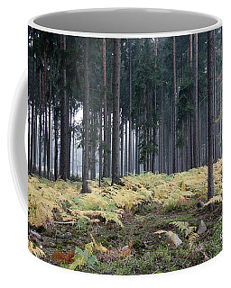 Fog In The Forest With Ferns Coffee Mug by Michal Boubin