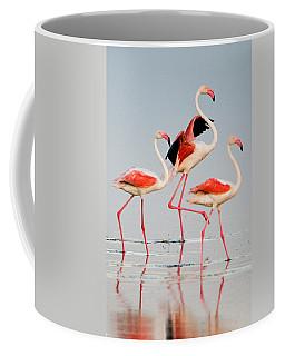 Greater Flamingos Phoenicopterus Roseus Coffee Mug