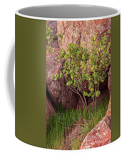 Hidden Coffee Mug by Iris Greenwell