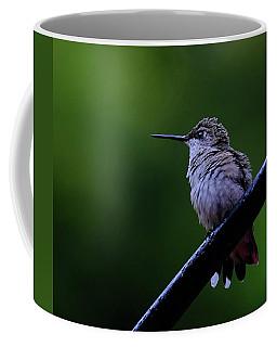 Hummingbird Portrait Coffee Mug by Ronda Ryan