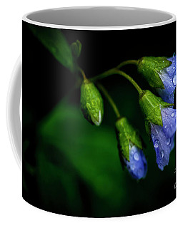 Coffee Mug featuring the photograph Jacobs Ladder by Thomas R Fletcher