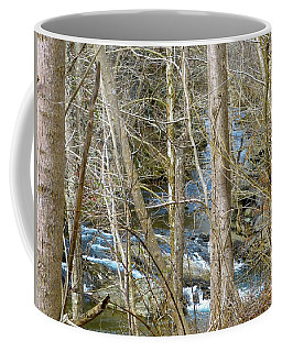 Coffee Mug featuring the photograph Little Falls by Donald C Morgan