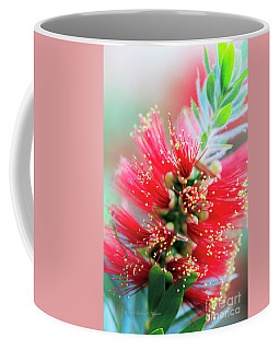 Little John Dwarf Bottlebrush Bloom Coffee Mug