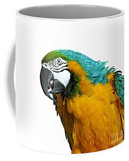 Macaw Bird Coffee Mug