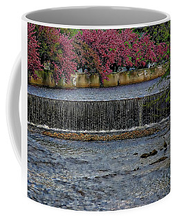 Mill River Park Coffee Mug