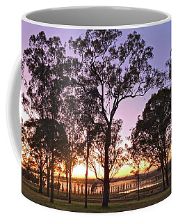 Misty Rural Scene With Dam And Trees Coffee Mug