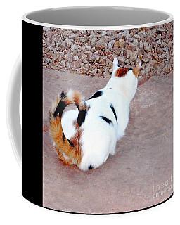 Silly Calico Kitty Coffee Mug