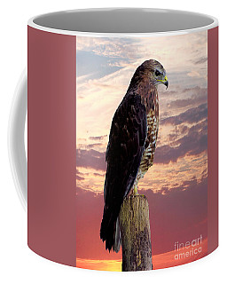 Peregrine Falcon Coffee Mug by Lynn Bolt
