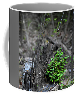 Coffee Mug featuring the photograph Persistence by Skip Willits