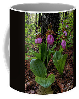 Pink Ladies Slipper Patch Coffee Mug