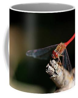 Red Eye Coffee Mug by David Stasiak