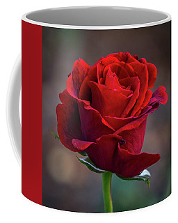 Red Rose Coffee Mug by Jane Luxton