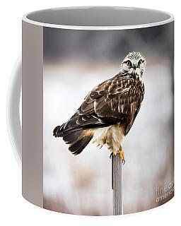 Rough-legged Hawk Coffee Mug