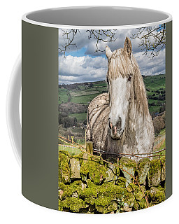 Coffee Mug featuring the photograph Rustic Horse by Nick Bywater