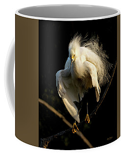 Snowy Beauty Coffee Mug