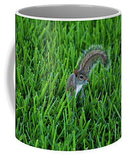 Coffee Mug featuring the photograph 2- Squirrel by Joseph Keane