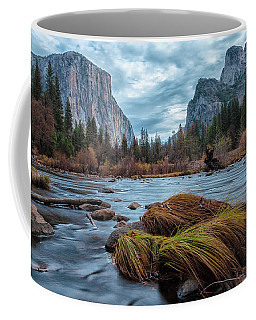 Storm Arrived Coffee Mug