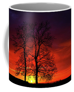 Coffee Mug featuring the photograph Sunset by Bess Hamiti