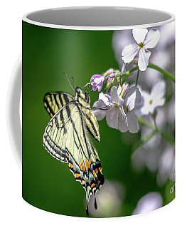 Swallowtail Butterfly Coffee Mug by Cheryl Baxter