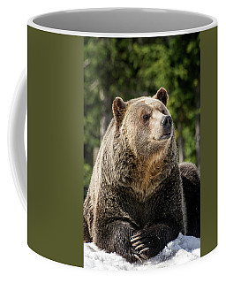 The Grizzly Bear Grinder Coffee Mug