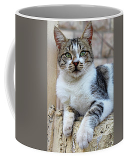 Coffee Mug featuring the photograph The Wait by Munir Alawi