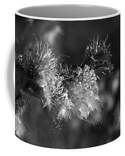 Thistle Seeds Coffee Mug by Dariusz Gudowicz