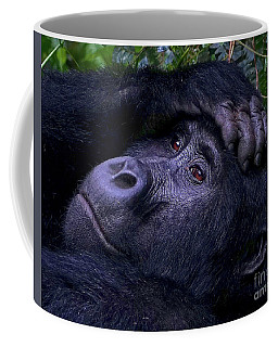 Thoughtful Coffee Mug by Michael Cinnamond