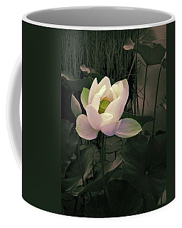 Coffee Mug featuring the photograph Twilight Lotus by Jessica Jenney