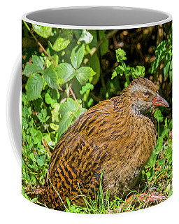 Weka Coffee Mug