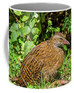 Weka Coffee Mug by Patricia Hofmeester