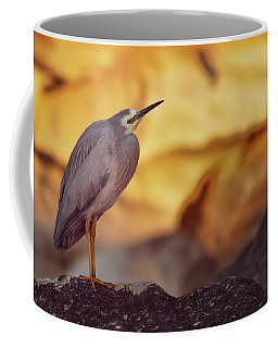 White-faced Heron At The Beach Coffee Mug