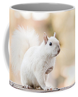 White Squirrel Coffee Mug