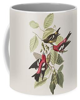 Crossbill Coffee Mugs