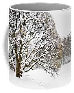 Winter Park Coffee Mug by Irina Afonskaya