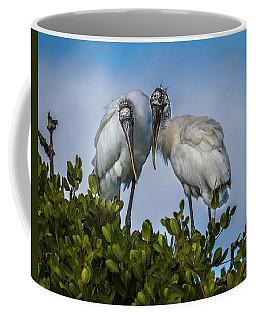Wood Stork Coffee Mug by Ronald Lutz