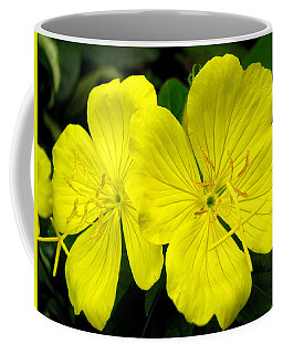 Coffee Mug featuring the photograph Yellow Flowers by Stephanie Moore