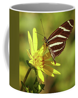 Zebra Longwing Coffee Mug by Jane Luxton