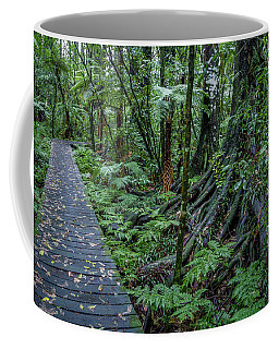 Coffee Mug featuring the photograph Forest Boardwalk by Les Cunliffe