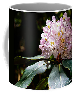 Coffee Mug featuring the photograph 20120621-dsc05834 by Christopher Holmes
