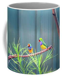 Aussie Rainbow Lovebirds Coffee Mug