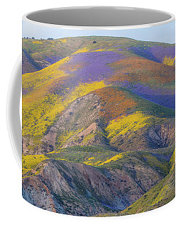2017 Carrizo Plain Super Bloom Coffee Mug