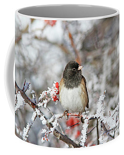 Dark-eyed Junco Coffee Mug