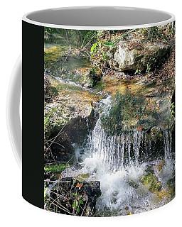 Mini Waterfall Coffee Mug