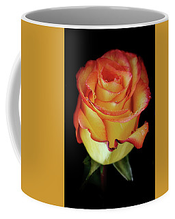 23rd Anniversary Rose Coffee Mug