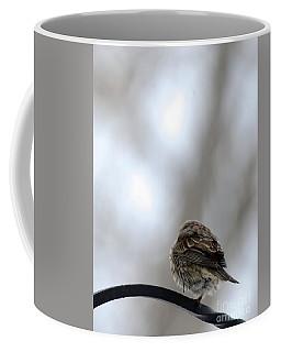 25 Degrees Coffee Mug