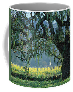 2b6319 Mustard In The Oaks Sonoma Ca Coffee Mug